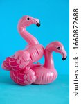 couple of inflatable pink... | Shutterstock . vector #1660872688