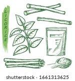 licorice spice  liquorice root... | Shutterstock .eps vector #1661313625