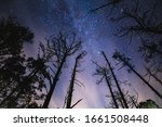 Starry Milky Way Night In The...