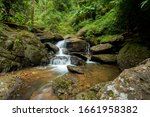 headwaters the forest waterfall nature water landscape river beautiful forest park stream natural travel green rock