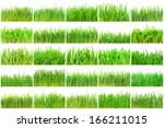 fresh green grass isolated on... | Shutterstock . vector #166211015