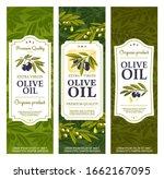 olive oil bottle package labels ... | Shutterstock .eps vector #1662167095