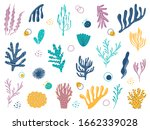 various marine plants....   Shutterstock .eps vector #1662339028