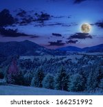 coniferous forest on a steep mountain slope at midnight - stock photo