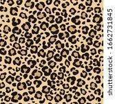 leopard skin seamless pattern.... | Shutterstock .eps vector #1662731845