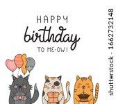 Happy Birthday To Me Funny Cat...
