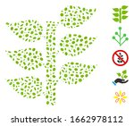dotted mosaic based on flora... | Shutterstock .eps vector #1662978112
