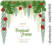 frame. exotic herbs isolated on ... | Shutterstock .eps vector #1662981505