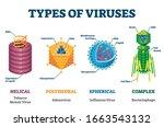 types of viruses vector... | Shutterstock .eps vector #1663543132