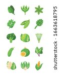 green healthy vegetables icon... | Shutterstock .eps vector #1663618795
