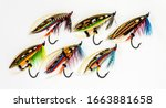 Six beautiful and colourful fly ...