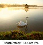 White Swan On The Lake At...