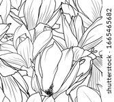 magnolia flowers seamless... | Shutterstock .eps vector #1665465682