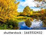 Autumn Forest Lake Water View....