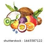 watercolor exotic tropical... | Shutterstock . vector #1665587122