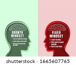 Human Head With Brain Inside....