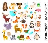 Big Collection Cartoon Animals  ...