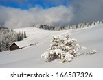 Mountain Landscape With Fresh...