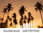 summer background with coconut... | Shutterstock . vector #1667057032