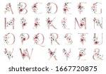 Alphabet  Floral Set Letters...