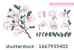 Vector Flowers Set With White...