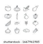 vegetables in design hand drawn ... | Shutterstock .eps vector #1667961985