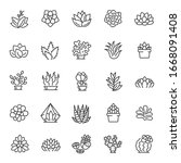 Succulents Of Various Shapes ...