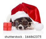 Cute Puppy With Red Gift Box...
