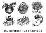 Apples In A Basket  Apples In A ...
