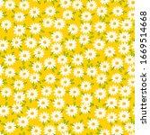 Daisy Seamless Pattern On...