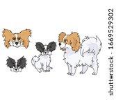 cute cartoon papillon dog and...   Shutterstock .eps vector #1669529302