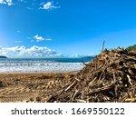 Umina Beach  Nsw   Australia  ...