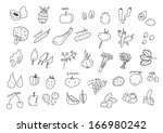 vegan set | Shutterstock .eps vector #166980242