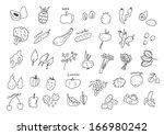 vegan set | Shutterstock .eps vector #166980242