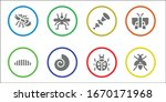 insect icon set. 8 filled...   Shutterstock .eps vector #1670171968