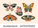 hand drawn various beautiful... | Shutterstock .eps vector #1670192632