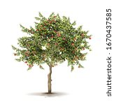 apple tree. ripe fruits on a... | Shutterstock .eps vector #1670437585