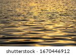 Golden light reflecting off the water of a lake.  - stock photo