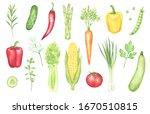watercolor set of bright... | Shutterstock . vector #1670510815