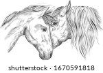 Horses Portrait In Love Black...