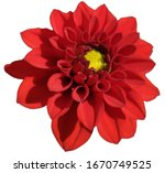 White Background With Red...