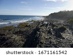 Rocky Coast With Seaweed And...