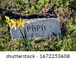"""Grave Marker Simply Says """"papa.""""..."""