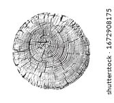 aged round piece of tree wood... | Shutterstock .eps vector #1672908175