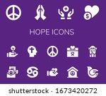 hope icon set. 14 filled hope... | Shutterstock .eps vector #1673420272