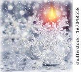 closeup photo of beautiful... | Shutterstock . vector #167348558