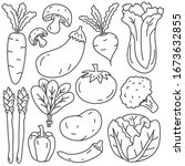 vegetable vector illustration... | Shutterstock .eps vector #1673632855