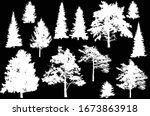 illustration with evergreen... | Shutterstock .eps vector #1673863918