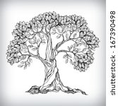 hand drawn tree symbol isolated ... | Shutterstock .eps vector #167390498