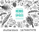 herbs and spices hand drawn... | Shutterstock .eps vector #1674447478